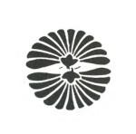 Daki-hiraki-kiku