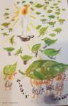kaori-san (2)